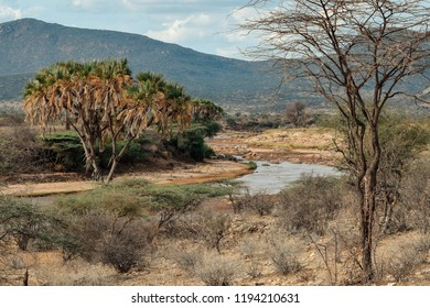 Ewaso Nyiro River in against an arid background, Samburu National Reserve, Kenya