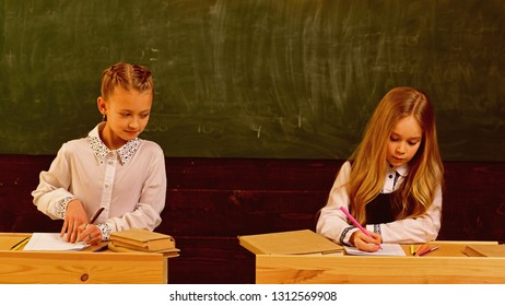 examination. girls are ready to examination. examination preparing. school examination of two pupils. having opportunity to everywhere