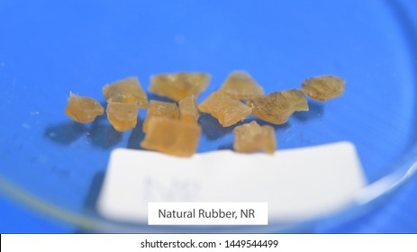 Examples of natural rubber, natural rubber (NR), Synthetic  (SR), Styrene-Butadiene  (SBR), Nitrile (NBR), Chloroprene (CR), Butadiene (BR), in science laboratories