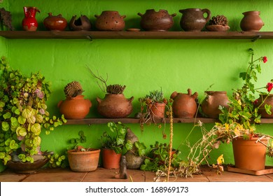 Examples of traditional gomeran pottery surrounded by some plants and flowers outside of a work shop