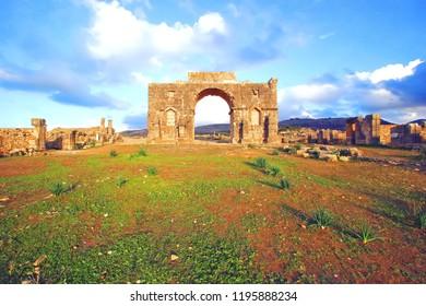 Excavated Berber and Roman city of Volubilis, former capital of Mauretania Kingdom, Meknes, Morocco