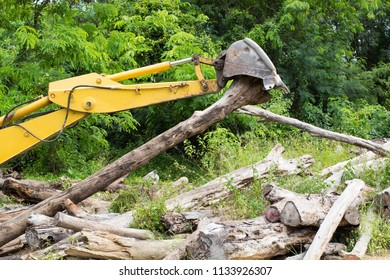excavator Deforestation of rainforest, Environmental problem, Excavator working in construction site by moving log to another place, selective focus.