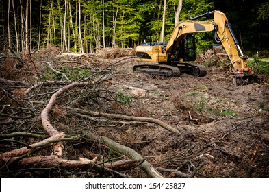 Excavator at a forest cleaning.