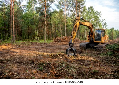 Excavator Grapple during clearing forest for new development. Tracked Backhoe with forest clamp for forestry work. Tracked timber Crane and Hydraulic Grab log Loader. - Shutterstock ID 1885055449
