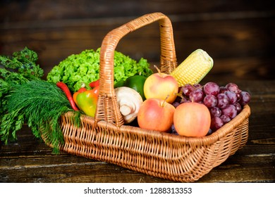 Excellent quality vegetables. Buy fresh homegrown vegetables. Grocery shop concept. Just from garden. Delivery service fresh vegetables from farm. Box or basket harvest vegetables wooden background.