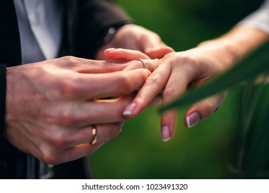 exchange rings for wedding registration of marriage between the bride and groom. Hands close up