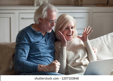 Excited aged husband and wife relax on couch at home feel euphoric winning online lottery at laptop, happy senior couple sit on sofa scream with happiness becoming winners celebrating victory