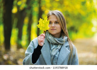 Excited happy fall woman smiling joyful and blissful holding autumn leaves outside in colorful fall forest. girl in gray coat smiling holding a maple leaf in the background of a carpet of flying autum