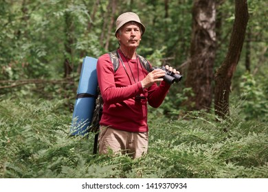 Excited male hitch hiker standing among trees with binoculars in forest, looks concentrated, eldery male wearing casual red sweater and hat, carries backpack and rug. Active recreation concept.