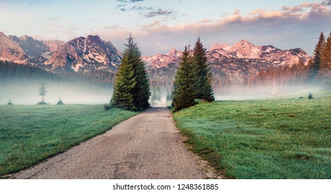 Exciting summer sunrise in Durmitor Nacionalni Park. Spectacular foggy view of of Montenegro countryside, Zabljak location. Beautiful world of Mediterranean countries. Traveling concept background.