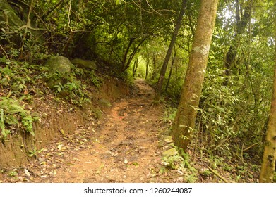 An exciting trekking experience at the southern tip of the mighty western ghats. Paithalmala is situated in Kannur district of Kerala state in India.