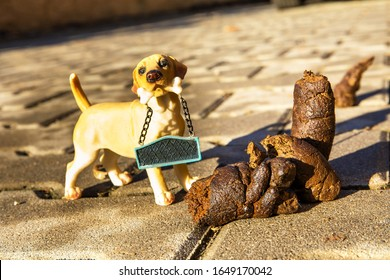 Excrement dog on floor. Shit on the street. Shit of dog on the street pavement. Concept of picking up dog waste shit, cleaning city urban environment