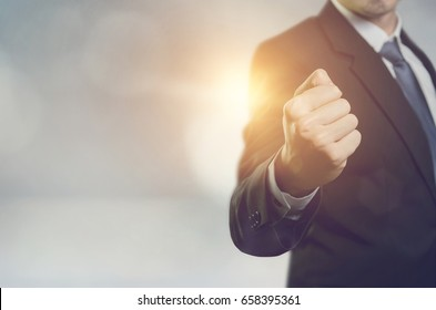 Executive businessman fist raised and celebrating victory, Young man successful. Copy space.