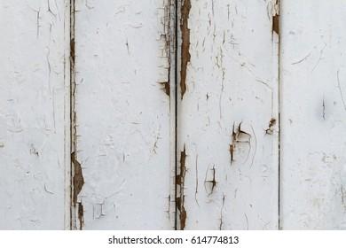 Exfoliating White Lattice Fence Coat