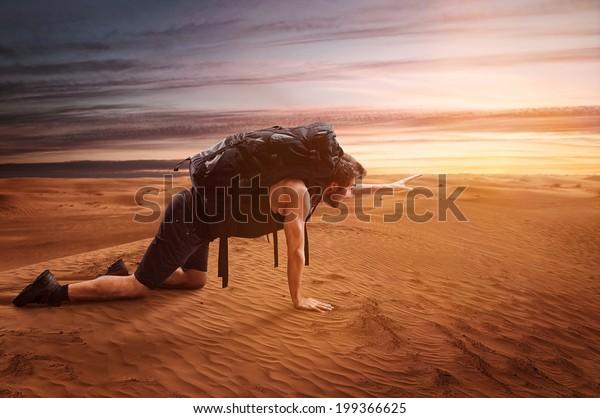 Exhausted Wanderer