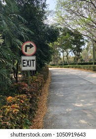 Exit road in the park