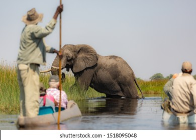Exiting the Okavango Delta in Botswana  by mokoro