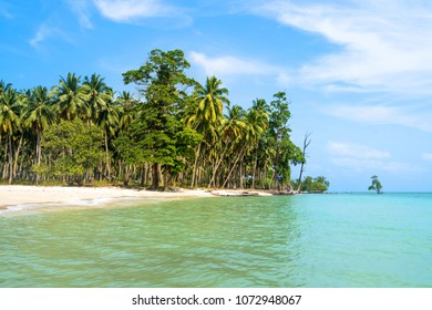 Exotic beach background. Summer travel and tourism, vacation destination concept. Long island. Andaman and Nicobar Islands India. uninhabited, unoccupied, uninhabitable, desert, desolate empty