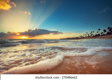Exotic Beach in Dominican Republic, Punta Cana, sunrise