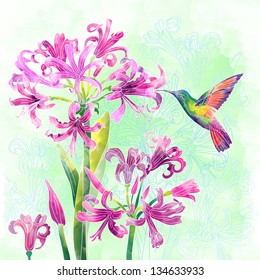 exotic flowers and humming bird