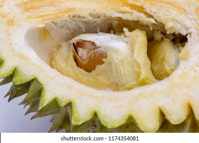 Exotic fruit durian on white background. Durian cut closeup photo with flesh and seed inside. Exotic fruit durian top view photo. Thailand famous fruit. Spiky peel and sweet flesh of tropical fruit