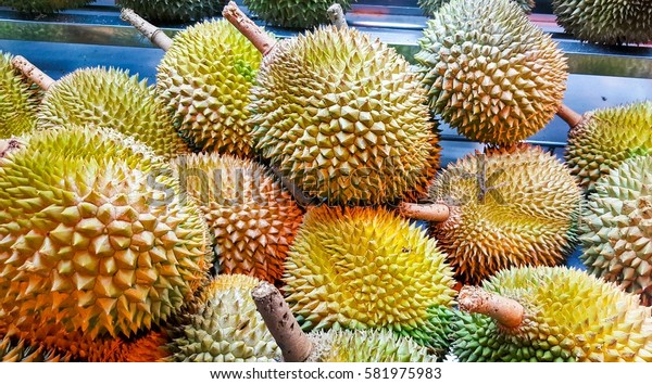 Exotic fruit - the durian.A popular treat.Grows in Southeast Asia.
