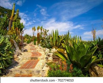 Jardin Exotique D Eze Images Stock Photos Vectors Shutterstock