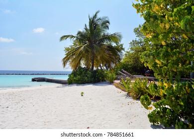 Exotic island in the Maldives