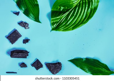 exotic leaves. charcoal. cosmetology and supplement. blue background