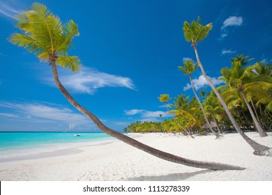 Exotic and luxury beach background. Summer travel and tourism, vacation destination concept. Zanzibar Coast Landscape in Tanzania. Zanzibar is a semi-autonomous region of Tanzania in East Africa.
