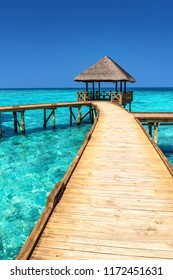 Exotic Paradise. Travel, Tourism and Vacations Concept. Tropical Exotic Resort at Paradise Maldives island