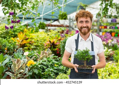 Exotic plants he owns. Portrait of a happy professional florist man smiling to the camera holding a pot with a bonsai tree posing in his greenhouse