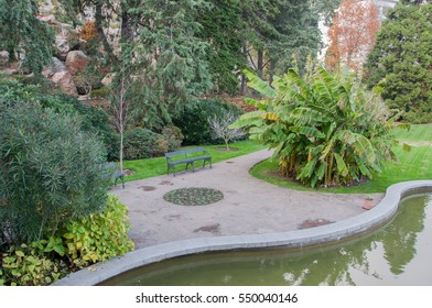 Exotic plants, pond and lawn in the park in high quality