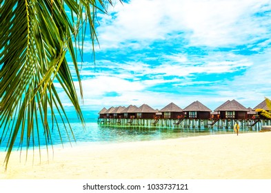 Exotic wooden houses on the water and palm leaf in the foreground