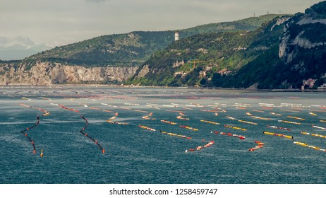 Expanses of colored buoys lined up in the Gulf of Trieste, Friuli Venezia Giulia, Italy