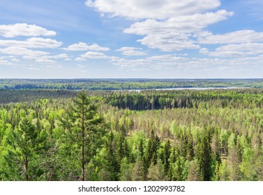 The expanses of the north of Russia, Karelia