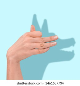 Expectation and reality. Shadow of the dog behind of the human hand on blue background. Negative space to insert your text. Modern design. Contemporary art. Creative conceptual and colorful collage.