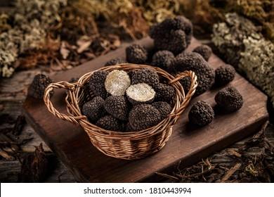 Expensive black truffles gourmet mushrooms in wicker basket