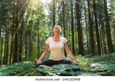 Experience the forest while bathing in the forest (Shinrin Yoku) with all her senses. A 50 year old blonde woman sits cross legged relaxed. She fuels the sun and the atmosphere of the forest. Sun shin