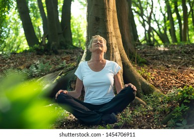 Experience the forest while bathing in the forest (Shinrin Yoku) with all her senses. A 50 year old blonde woman sits cross legged relaxed. She feels the sun and the atmosphere of the deciduous forest