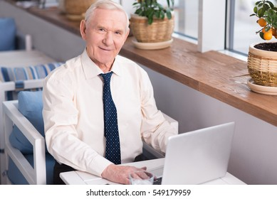 Experienced pleasant executive typing
