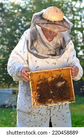 Experienced senior apiarist and swarm of bees in apiary