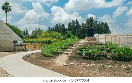 an experimental research area on kibbutz magal in israel showing drip irrigation, shaded greenhouses and outdoor crops with a forest in the background