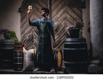 Expert brewer in apron holds glass of beer and checking quality of brewed drink at brewery factory.