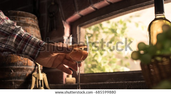 Expert farmer and wine maker tasting a glass of delicious white wine in the wine cellar and lush vineyard on the background