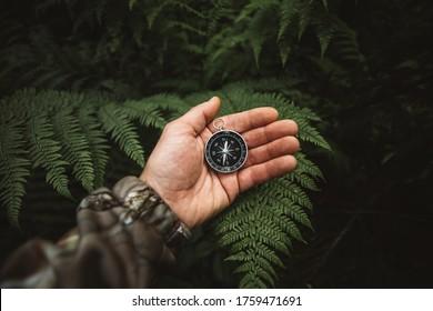 Explorar personas sosteniendo una brújula y buscando las direcciones correctas en la jungla. Viajes de supervivencia, concepto de estilo de vida.