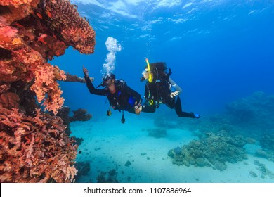 Explorer people underwater . Two adult person diving in first time on tropical reef with blue background, beautiful coral and small fish. Man pointing on top and holding woman by hand.
