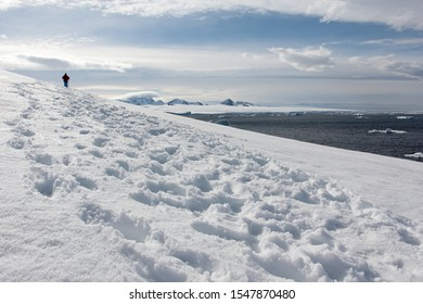 Explorer Trekking on Antarctic Expedition Across Snow Covered Shoreline in the Antarctic Peninsula With the Ocean, Icebergs and Snow Capped Mountains in the Background