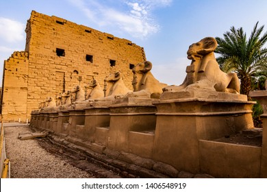 EXPLORING EGYPT - KARNAK TEMPLE - Statues/sculptures outside entrance to Karnak Temple. Beautiful Egyptian landmark with hieroglyphics, decayed temples, chapels and other buildings. Luxor, Egypt
