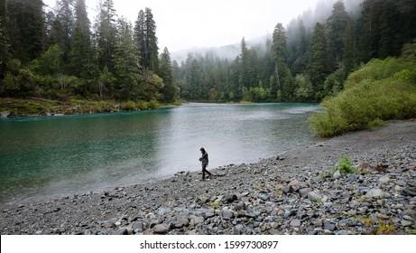 Exploring the river in the rain in Jedediah Smith State Park in California